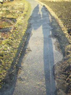 伸びる影。